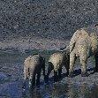 Dzangha-Sangha National Park and Boali Bangui Central African Republic Travel Photographs