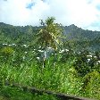 Grenada Island pictures St Georges Review Picture