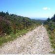 Isle of Man Douglas Diary Experience