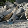 Galapagos Islands Ecuador Travel Blog Galapagos Islands boat ride