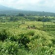 Holiday in Bali Denpasar Indonesia Trip Photos