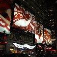 New York Travel Guide United States Travel Sharing