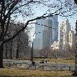 New York Travel Guide United States Travel Photographs