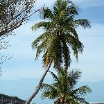 Romantic getaway in Florida Florida Keys United States Blog Review Romantic getaway in Florida