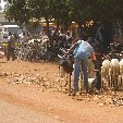 Burkina Faso Africa Banfora Picture gallery