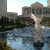 Las Vegas hotels on The Strip United States Trip Experience