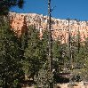 Bryce Canyon National Park United States Vacation Photo
