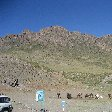 The Gobi Desert in Mongolia Kharkhorin Diary