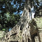 Angkor Wat Cambodia Siem Reap Blog Pictures