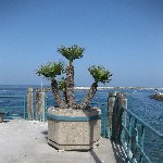 Redondo Beach Pier United States Travel Sharing