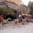 The great temple of Petra Jordan Holiday Sharing