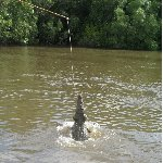 Jumping crocodiles in Darwin Australia Travel Blog