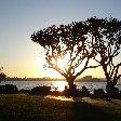 San Diego Balboa Park United States Trip Sharing