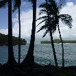 French Guiana Islands Cayenne Trip Sharing
