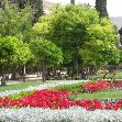 Things to do in Shiraz Iran Vacation Picture