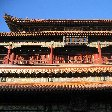 Beijing and the Forbidden City China Travel