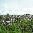 Nauru Island Pictures Yaren Blog Experience
