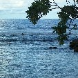 Nauru Island Pictures Yaren Travel Blog Nauru Island Pictures