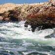 Reserva Nacional de Paracas near Pisco Peru Diary Tips