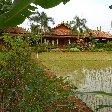 Bogor Botanical Garden Indonesia Trip Experience