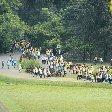 Bogor Botanical Garden Indonesia Travel Photographs