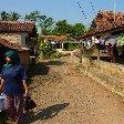 Bogor Botanical Garden Indonesia Vacation Adventure