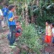 Bogor Botanical Garden Indonesia Travel Adventure