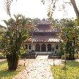 Bogor Botanical Garden Indonesia Diary Adventure