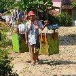 Bogor Botanical Garden Indonesia Vacation Tips