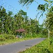 Ubud Indonesia Travel Pictures