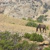 Ten Sleep Wyoming United States Trip Photo Ten Sleep Wyoming