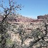 Canyonlands National Park Moab United States Diary Sharing Canyonlands National Park
