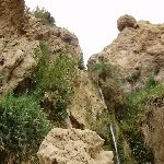 Ein Gedi Nature Reserve Israel Album
