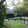 Gweru Antelope Park Zimbabwe Travel Blog