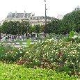Summer in Paris France Blog Adventure