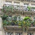 Summer in Paris France Vacation Adventure
