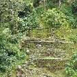 Ciudad Perdida trek Colombia Trip Sharing