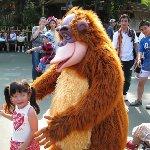 Tokyo Disneyland photos Japan Travel Tips