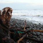 Playa El Tunco El Salvador Review Gallery