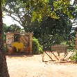 Ziwa Rhino Sanctuary Uganda Nakasongola Trip Photographs
