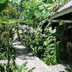 Krabi Thailand Trip Guide Krabi Thailand