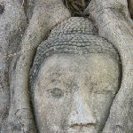Ayutthaya tour Thailand Photo