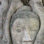Ayutthaya tour Thailand Trip Picture