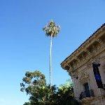 San Diego Tour United States Photo Sharing