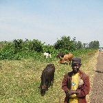 Children of Uganda Hoima Picture Sharing