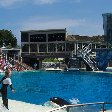 Sea World tickets San Diego United States Travel Package