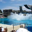 Sea World tickets San Diego United States Vacation Information