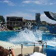 Sea World tickets San Diego United States Travel Photo