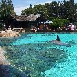 Sea World tickets San Diego United States Album Sharing