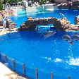 Sea World tickets San Diego United States Blog Review